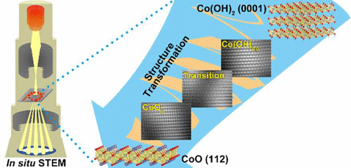 structural transition of 2D Co(OH)2 nanosheets to CoO via in situ TEM