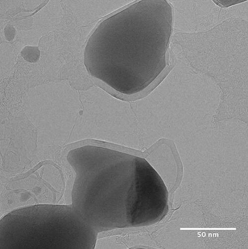 Molten sample at 900ºC. Image courtesy Institut Jean Lamour, Université de Lorraine - CNRS, Nancy, France