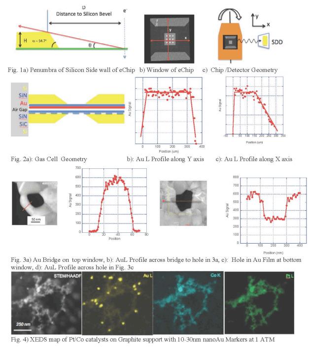 AuL observed via SiNx membrane window