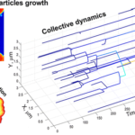 collective dynamics of platinum nanoparticle growth