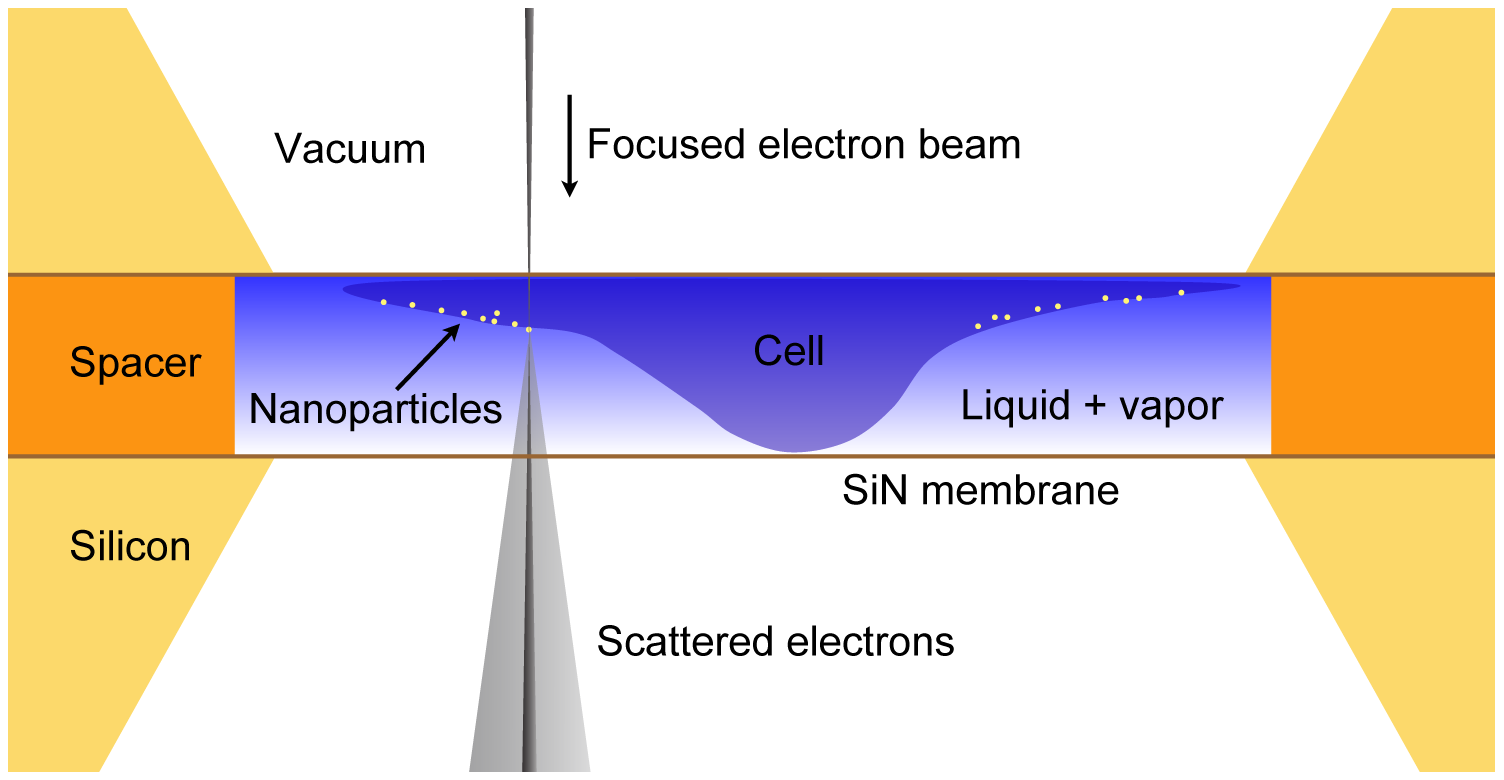 Nanomaterials for Stem Cell Imaging