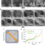 Nanoscale Kinetics of Asymmetrical Corrosion