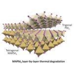 Lead Tri-iodide Perovskite Microplates