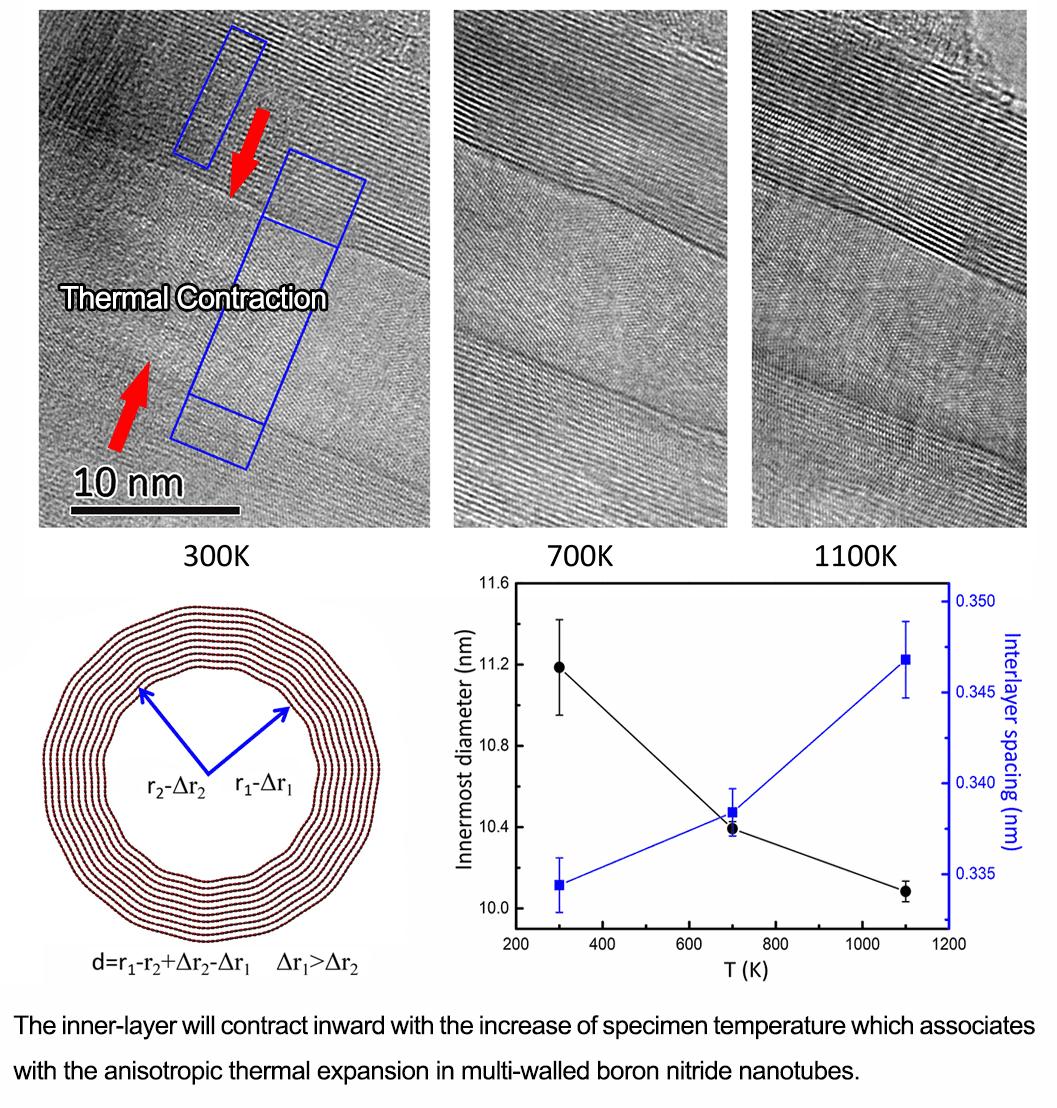 Multiwalled Boron Nitride Nanotubes upon in Situ Heating